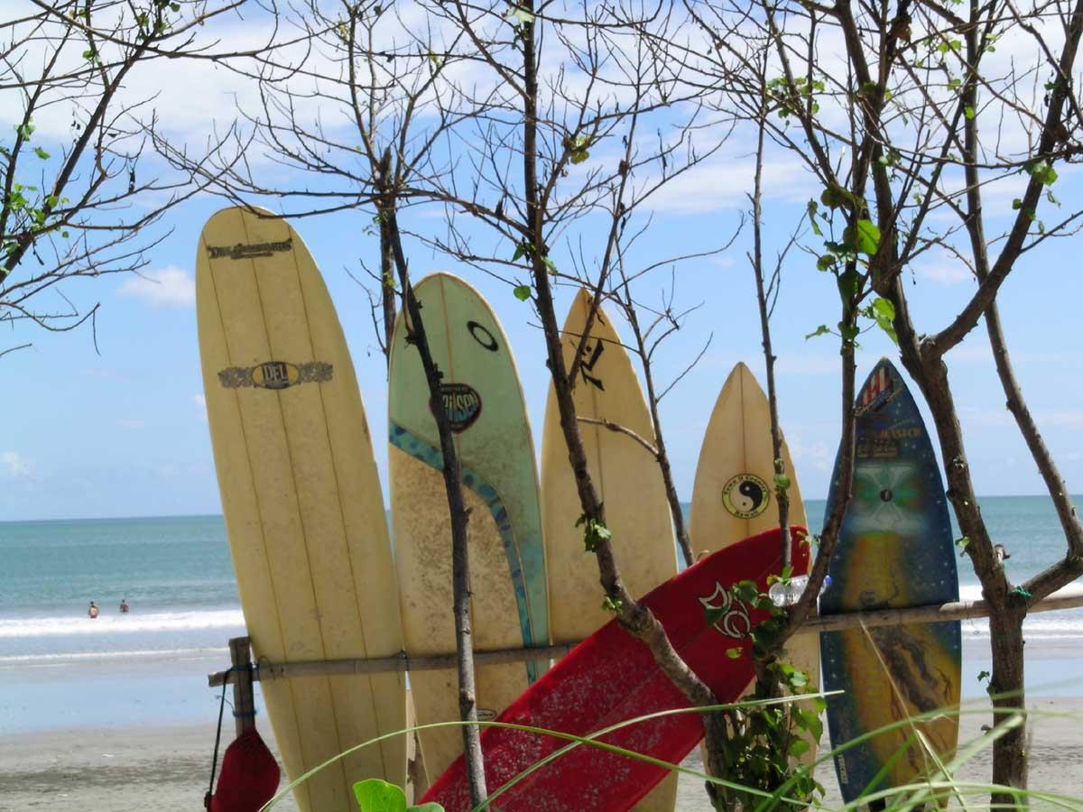 Bali Surf Pic