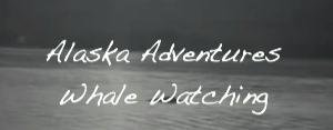Alaskan_Adventures_Whale_Watching