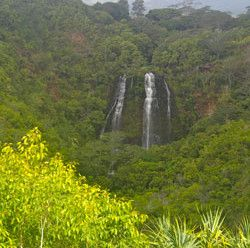 Opaeka'a Falls Kauai
