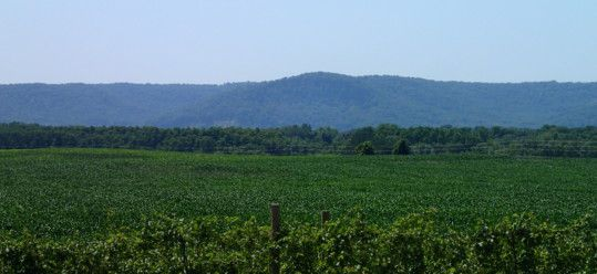 Wine and Cheesehead – Travel to Wisconsin