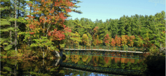 Nature In New Hampshire – Your Beginner's Guide