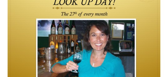 Unveiling Look Up Day – The 27th of Every Month