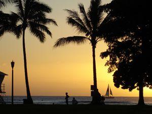 Hawaiian Vacation – Why not!