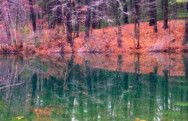 Fall Colors at Walden Pond