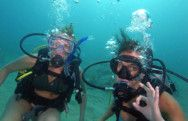 Fort Lauderdale, Florida Mercedes Wreck Dive