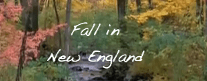 New_England_Fall_Colors