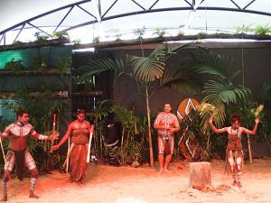 Dance_performance_at_Tjupakai_Aboriginal_Center_Cairns_Australia