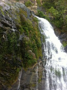 Stony_Creek_Waterfall_on_Kuranda_Train