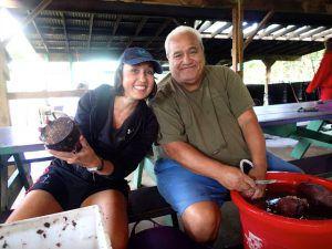Volunteers_Cleaning_Taro_at_Waipa_Hanalei_Kauai_by_Heidi_Siefkas