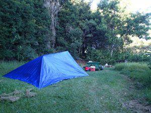 Campsite_Kokee_State_Park_Kauai_by_Heidi_Siefkas