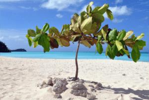 Antigua_Barbuda_Travel