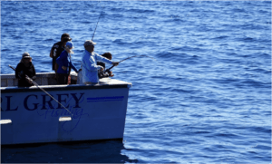 Deep_Sea_Fishing_Image