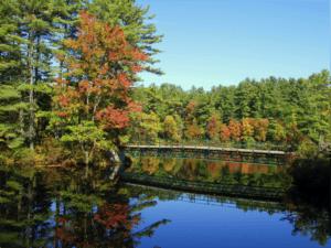 New_Hampshire_Fall_Image