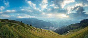 agriculture-landscape-bali
